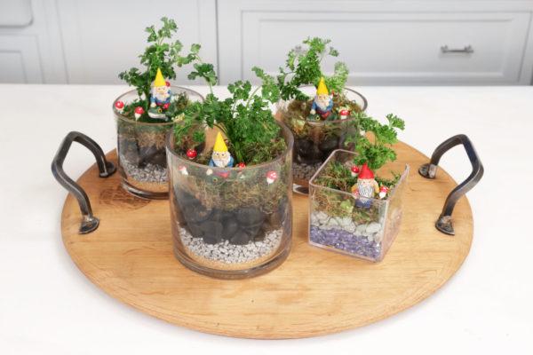 Passover Gnome Garden