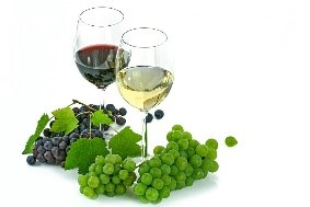 Wine & Grapes