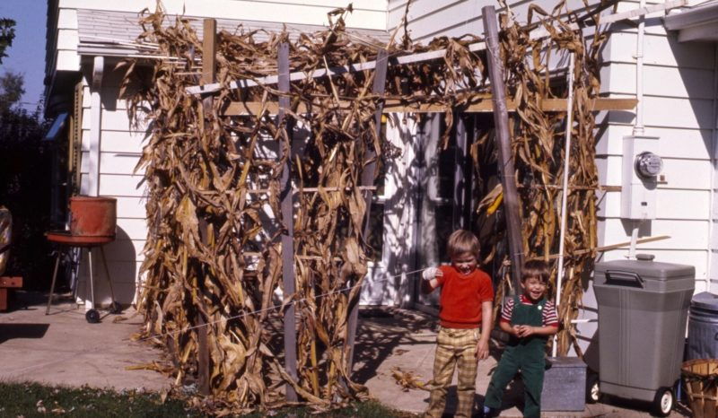 Andy's Childhood Succah