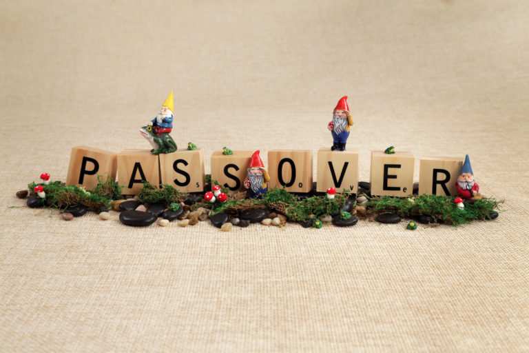 Passover Gnomes